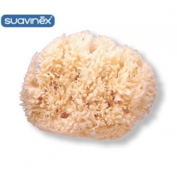 Suavinex Large Natural Bath Sponge (3302927)