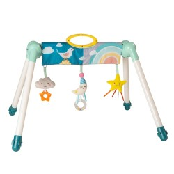 TAF Toys Mini Moon Take to Play Gym
